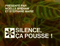 silence_ca_pousse2-7fc3e